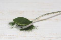 Organic spirulina algae powder in  spoon Royalty Free Stock Photography