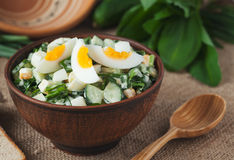 Organic spring salad with chopped ramson in rustic Royalty Free Stock Photo