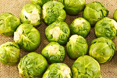 Organic sprouts on hessian. A closeup of organic brussel sprouts on a hessian background Stock Photography