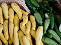 Organic squash Royalty Free Stock Photography