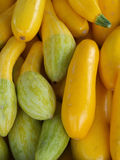 Organic Squash Stock Photography
