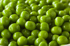 Organic Steamed Fresh Green Peas Stock Photography