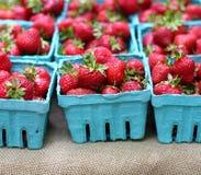 Organic Strawberries Stock Photo