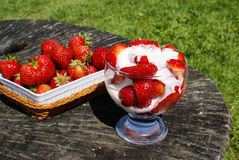 Organic strawberries with cream Stock Photography