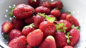 Organic strawberries stock video