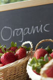 Organic Strawberries For Sale Royalty Free Stock Photo