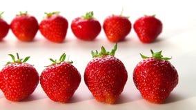 Organic strawberries on white background Stock Photos