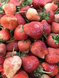 Fresh strawberry. Organic Strawberry background close up Royalty Free Stock Photo