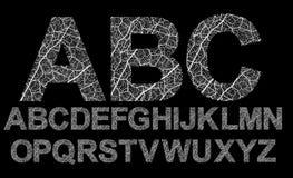 Organic style font Royalty Free Stock Photo