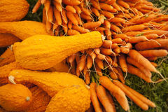 Organic summer squash and carrots for sale at the farmers market Royalty Free Stock Photos