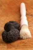 Organic summer truffle Stock Photography