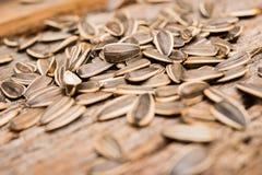 Organic Sunflower Seeds Stock Image