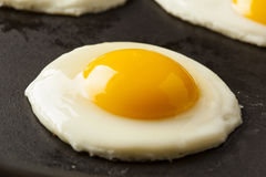 Organic Sunnyside up Egg Royalty Free Stock Photography