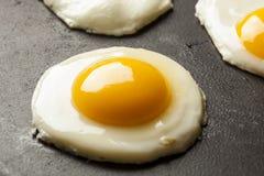 Organic Sunnyside up Egg Stock Image