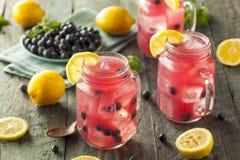 Organic Sweet Blueberry Lemonade Royalty Free Stock Photos