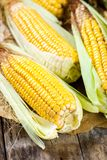 Organic sweet corn Stock Photos