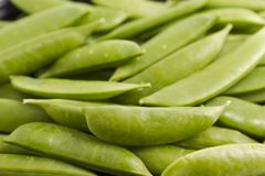 Organic Sweet Peas Royalty Free Stock Photography