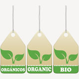 Organic tags Royalty Free Stock Photo