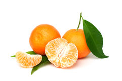 Organic tangerine Royalty Free Stock Photos