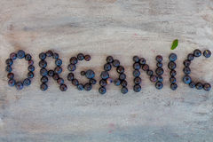 Organic Text. Written with Blueberries Royalty Free Stock Photos
