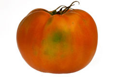 Organic Tomato. Isolate with white background Stock Images