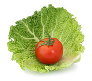 Organic Tomato on Cabbage. Fresh red organic tomato on green cabbage leaf on white background Stock Images