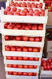 Organic tomato in crates on farmer market ready to sale Royalty Free Stock Photography