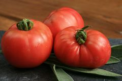 Organic tomato from rural permaculture. Royalty Free Stock Image