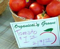 Organic Tomatoes. A basket of Tomatoes on a table with table cloth Royalty Free Stock Photos