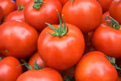 Organic tomatoes. Photographed in the market Stock Images