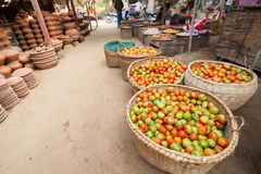 Organic tomatoes at asian market. Bagan, Myanmar Royalty Free Stock Images