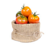 Organic tomatoes in basket Stock Photography