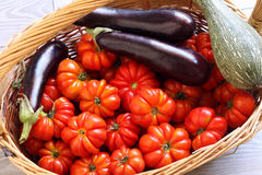 Organic tomatoes, eggplant and pumpkin in wicker basket Royalty Free Stock Photography