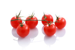 Organic tomatoes isolated on white Stock Image