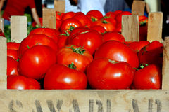 Organic tomatoes on a market stall. Tomatoes on a market stall Stock Images