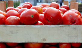 Organic tomatoes on a market stall Royalty Free Stock Photos