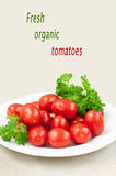 Organic tomatoes and parsley Stock Images