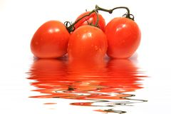 Organic tomatoes with water reflection. Organic tomatoes with water droplets and reflection Royalty Free Stock Photo