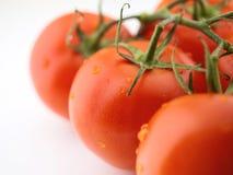 Organic tomatos Stock Photos
