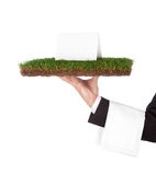Organic tray. Waiter with a tray of grass, green organic concept Royalty Free Stock Images