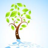Organic Tree royalty free illustration