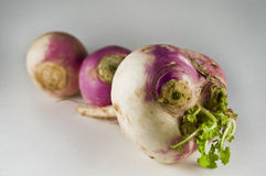 Organic Turnips. These are organic turnips from a CSA crop share in western Washington state Stock Photography