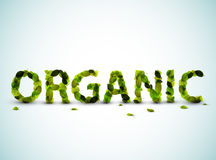 Organic - vector word made from fresh green leafs Royalty Free Stock Images