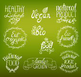 Organic, vegan, eco, bio natural food hand written sign Stock Image
