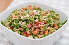 Organic Vegan Quinoa Salad Royalty Free Stock Photos