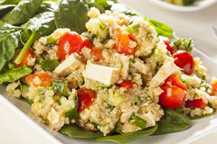 Organic Vegan Quinoa with vegetables Stock Photography