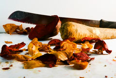 Organic vegetable chips Stock Photography