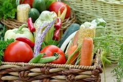 Organic vegetable close-up Stock Image