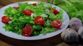 Organic vegetable salad stock footage