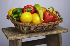 Organic vegetables Stock Photography